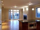 Open Kitchen and Livingroom