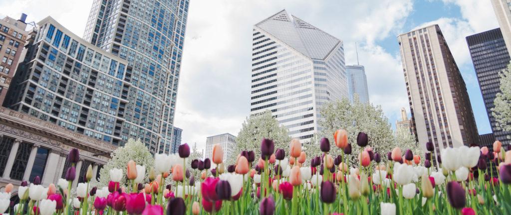 Spring Market trends